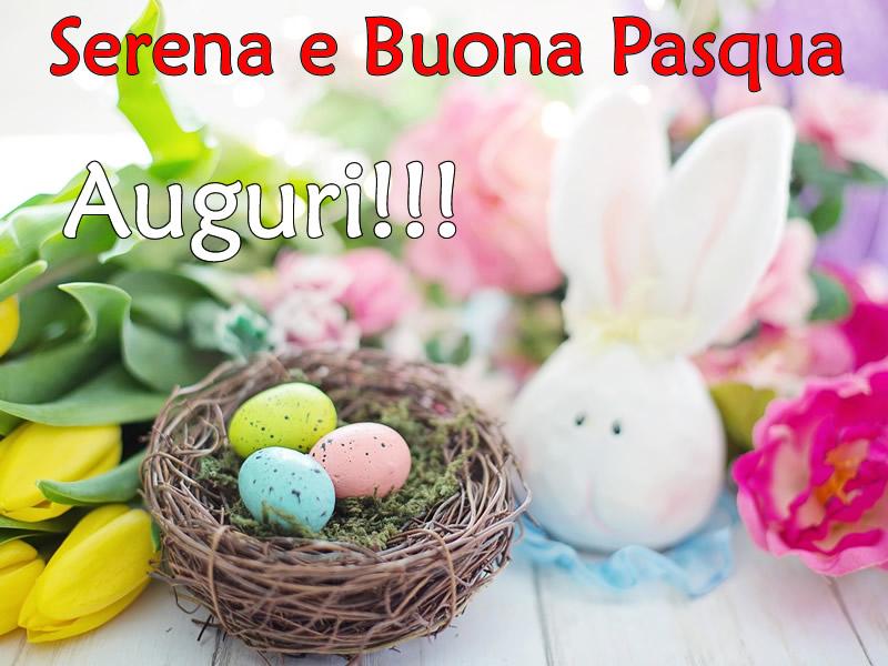 Serena e Buona Pasqua