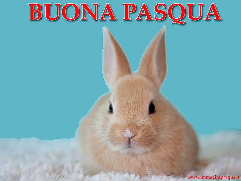 Buona Pasqua gratis
