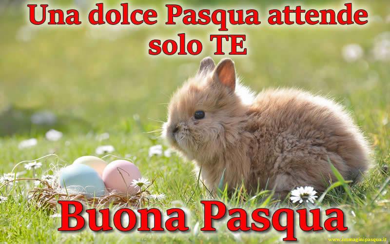 Frase Buona Pasqua