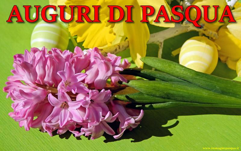Immagine Frase Auguri di Pasqua