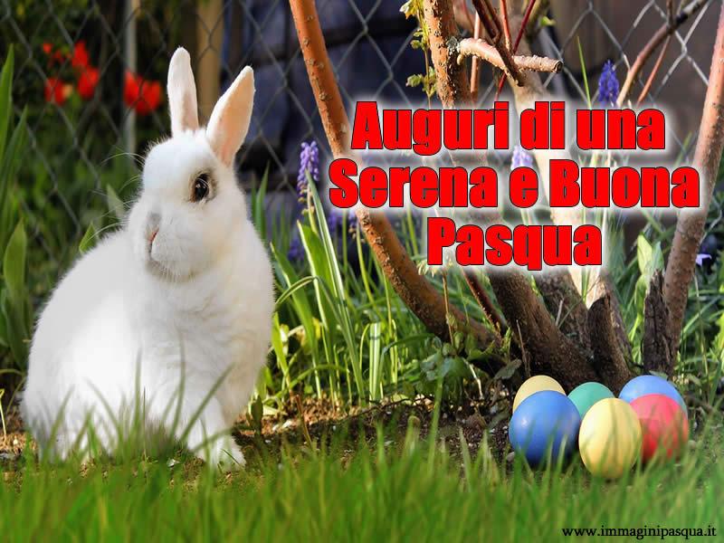 Immagini Buona Pasqua da condividere