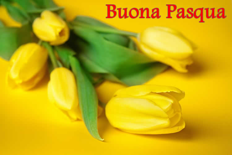 Immagine Auguri Buona Pasqua