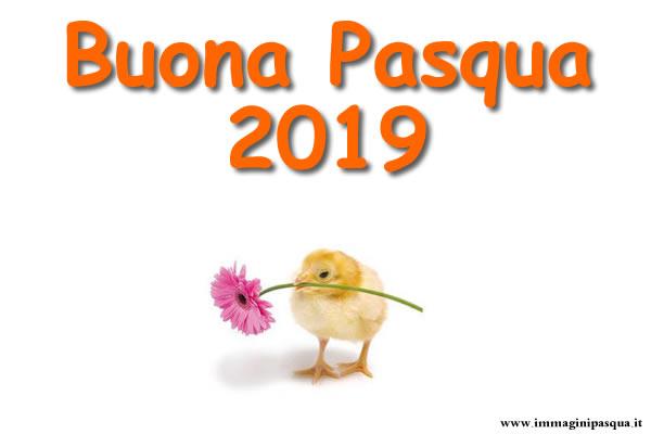 IMMAGINI AUGURI PASQUA 2019