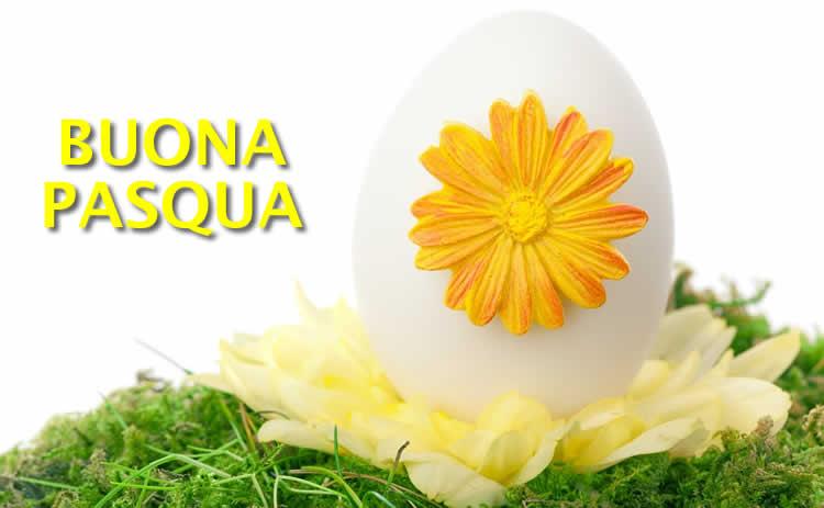 Buona Pasqua Da Condividere